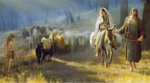 Mary onn Donkey